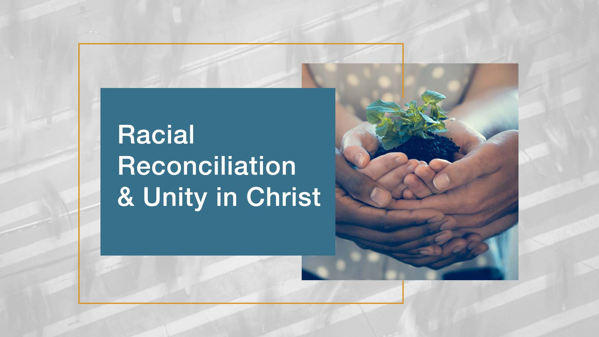 Racial Reconciliation & Unity in Christ