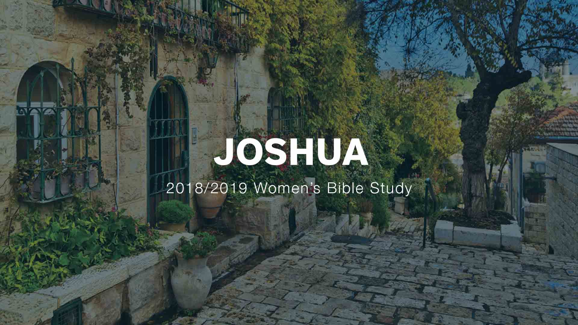 Women's Ministry Bible Studies